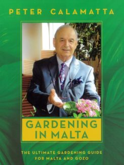 gardening in Malta